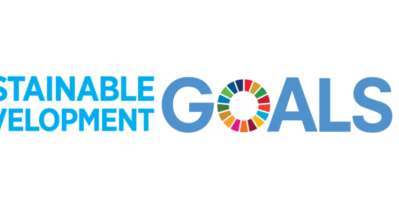 Sustainable Development Goals UN Logo
