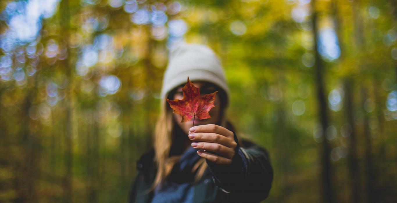 Young blonde woman wearing a gray toque, in a forest holding a maple leaf in front of her face.