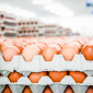 Canada has more data about eggs than it does about charities